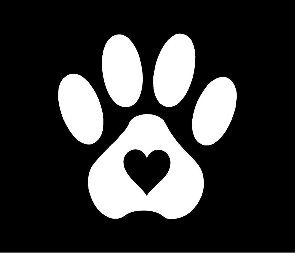 how to keep your dogs paw print