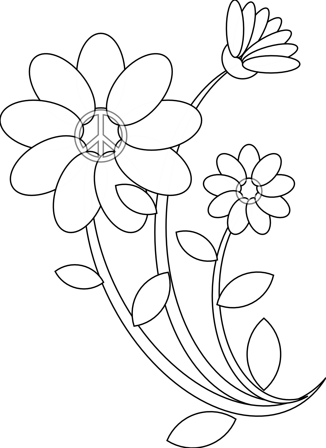 Flower Line Drawing Icon : Image gallery line drawings of flowers