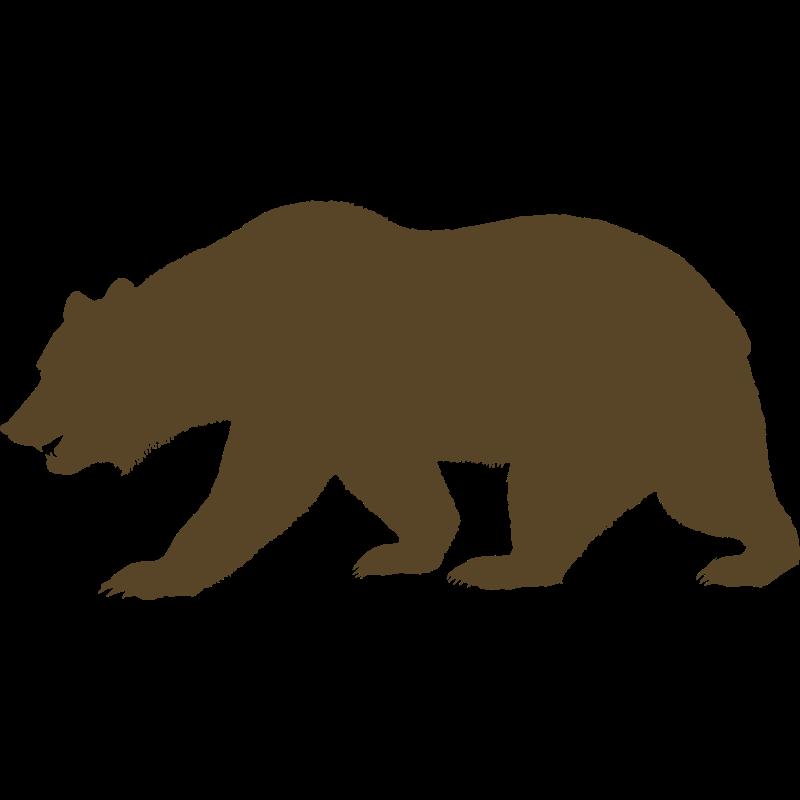 California Bear Outline Cliparts Co