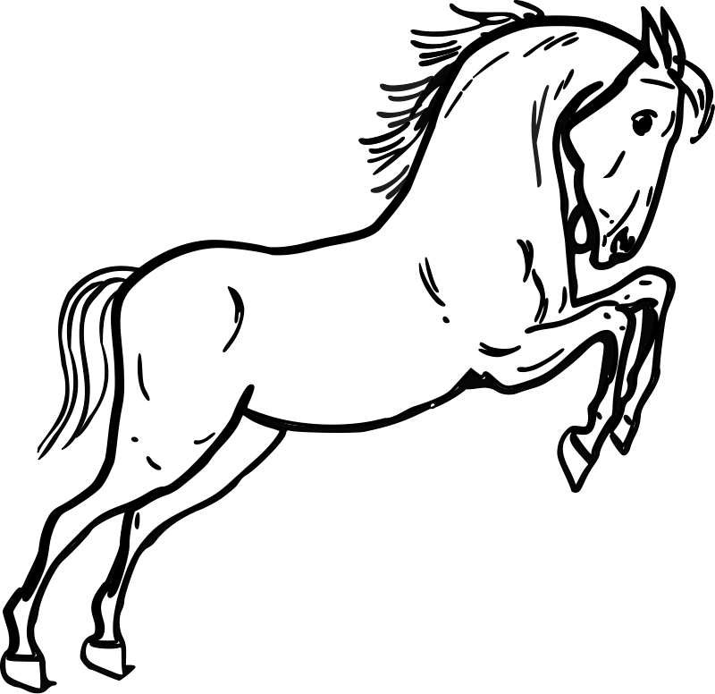 Jumping Horse Outline Clip Art Download