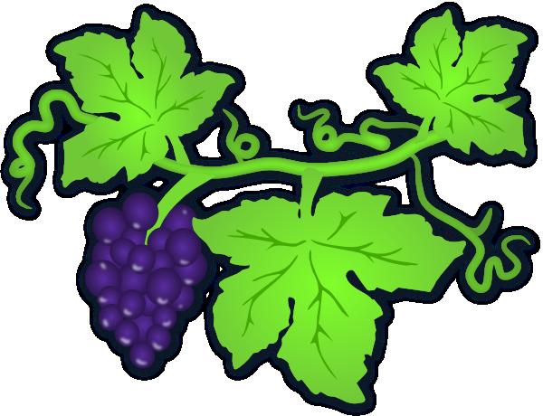 Grape vine clip art for Vine craft ideas