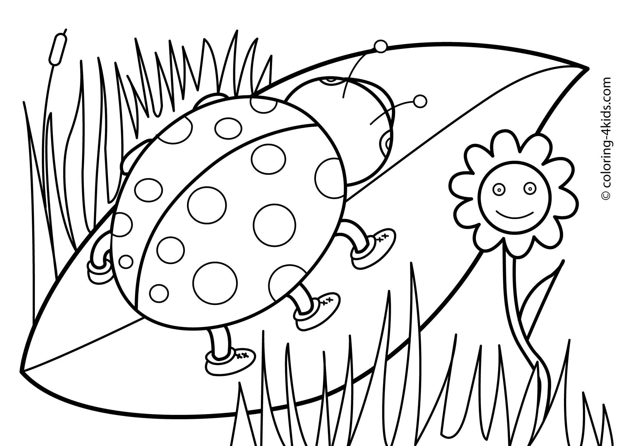 Free coloring pages spring flowers - Co Coloring Pictures Of Spring Spring Coloring Pages For Kids Free Printable Coloing 4kids Com