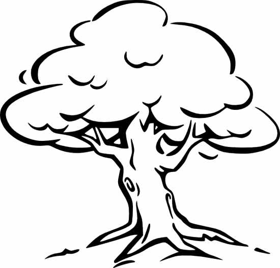 Tree clipart black and white   Free Reference ImagesOak Tree Clip Art Black And White
