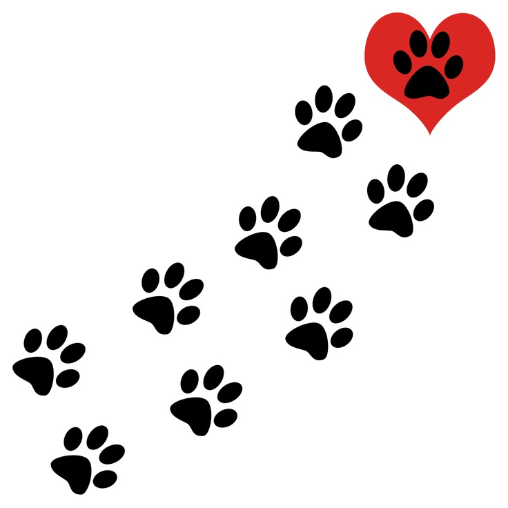 dog paw prints in - photo #17