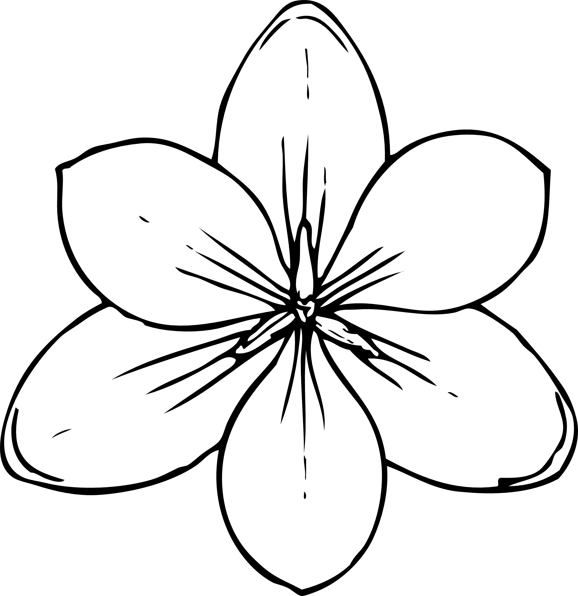 Line Drawing Of Flowers : Lotus flower line drawing cliparts