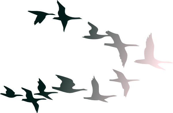 Birds Flying Clip Art - Cliparts.co