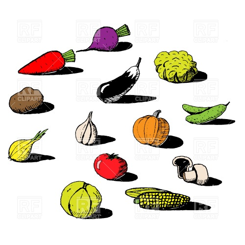 clip art food vegetables - photo #16