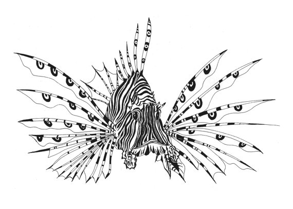 How To Draw A Lionfish Step By Step - Cliparts.co