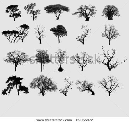 Black tree selection by byggarn.se, via ShutterStock | Tattoo ...