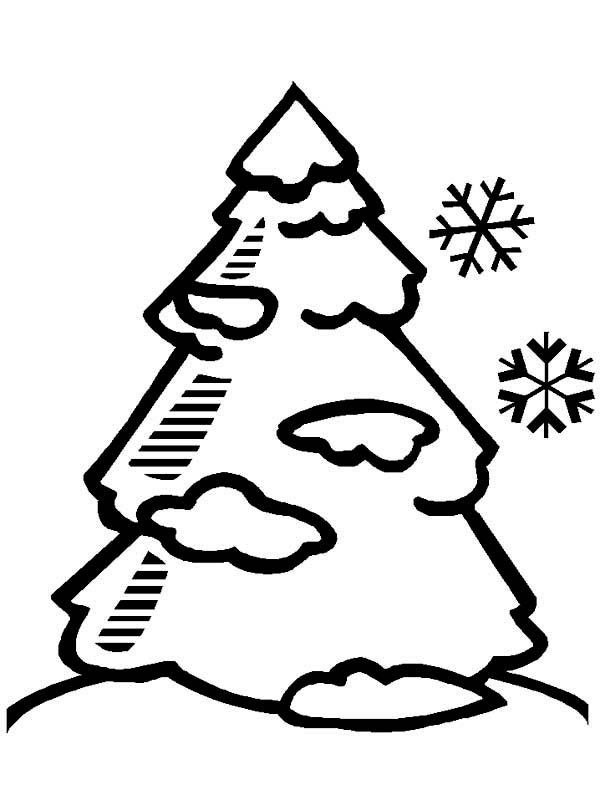 coloring pages winter tree - photo#33