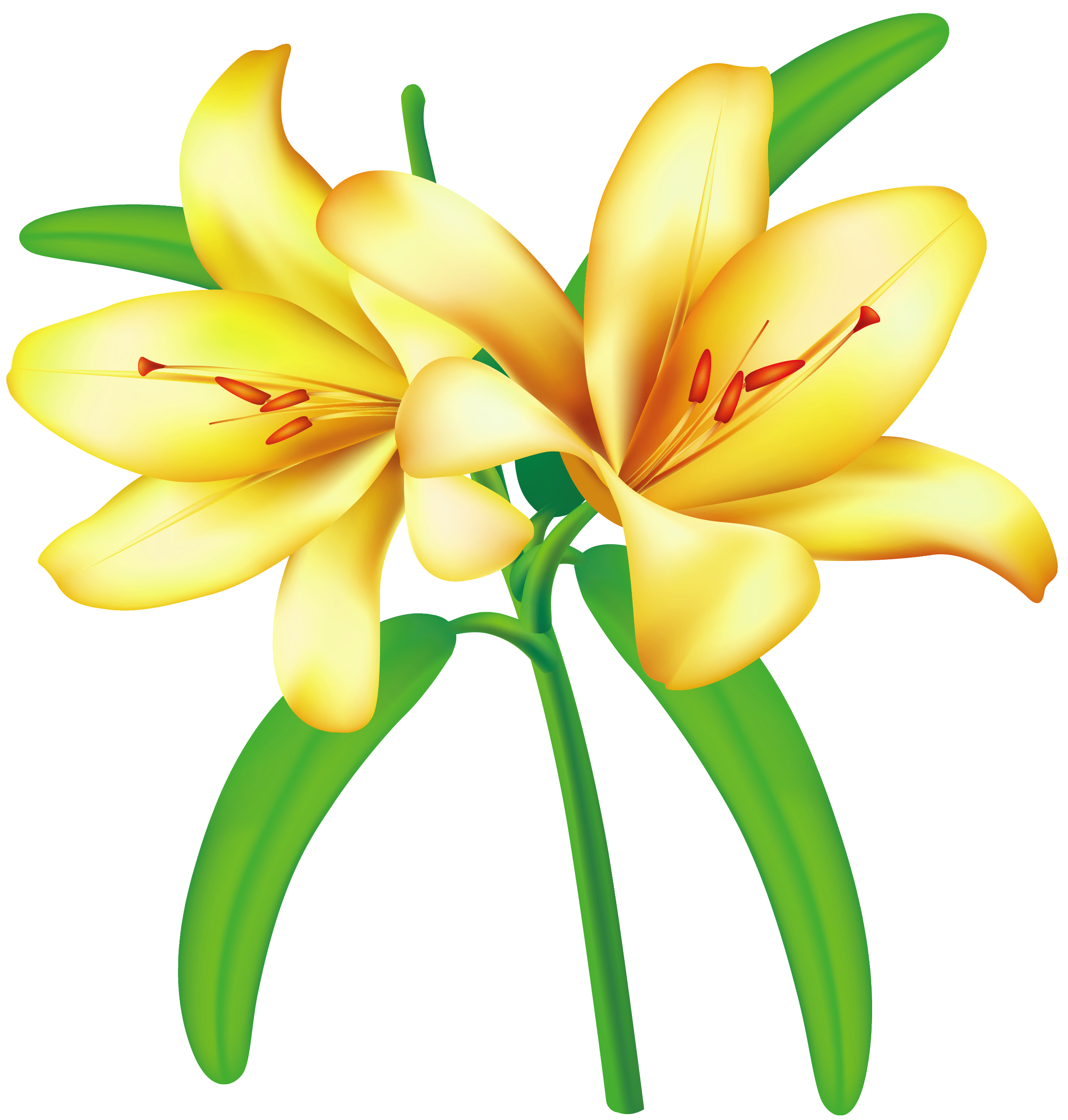 Yellow Flowers Clip Art Cliparts