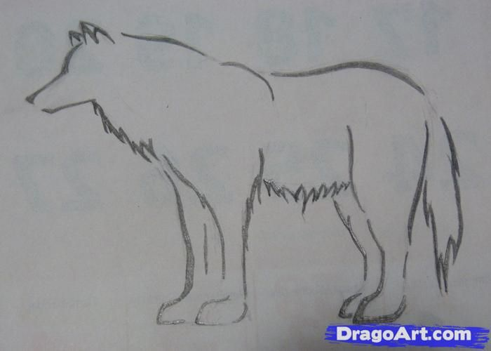 Drawing Ideas What How to Draw StepbyStep Easy Drawings
