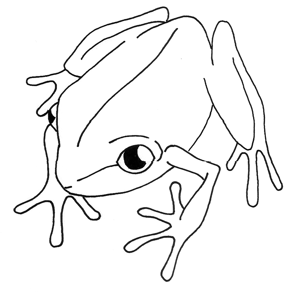 Line Drawing Pictures : Line drawing of animals cliparts