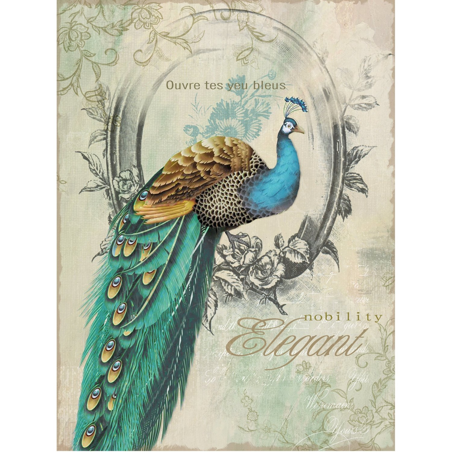 Peacock Images Art Cliparts Co