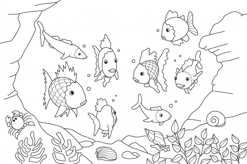 rainbow fish coloring page az coloring pages northsouth books the rainbow fish