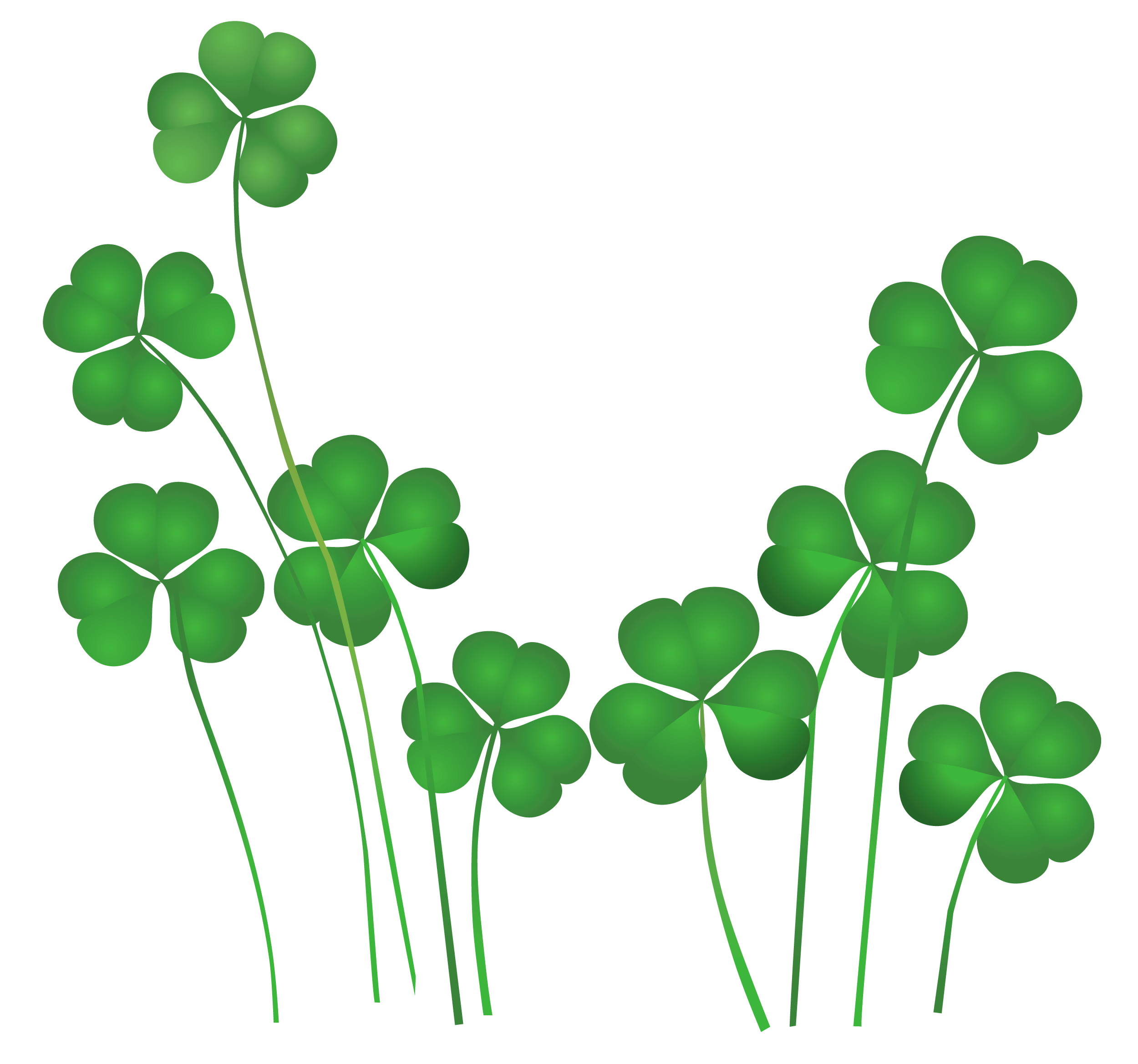 St Patricks Day Shamrocks Decor PNG Clipart