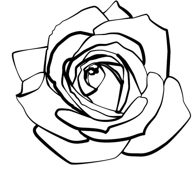 Line Art Of Rose : Rose line art cliparts