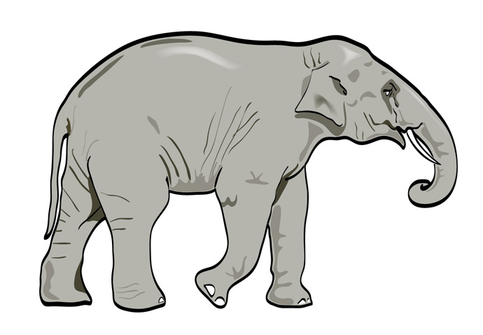 Vector Elephant - Animal - ClipArt Best - ClipArt Best