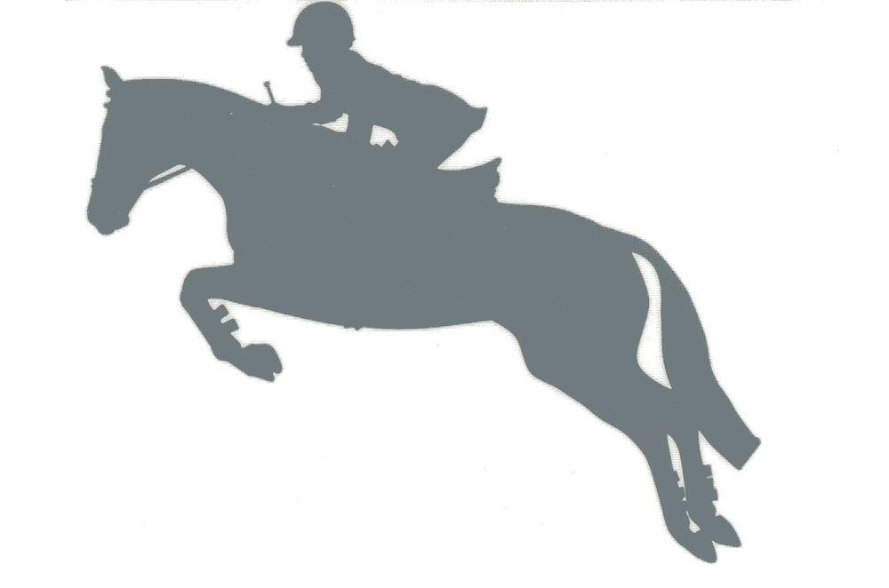 SM Silver Hunter Jumper Decal Jumping Horse Equine English ...