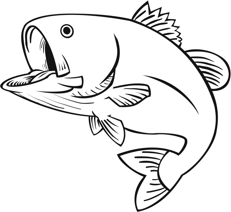 fish drawings cartoon