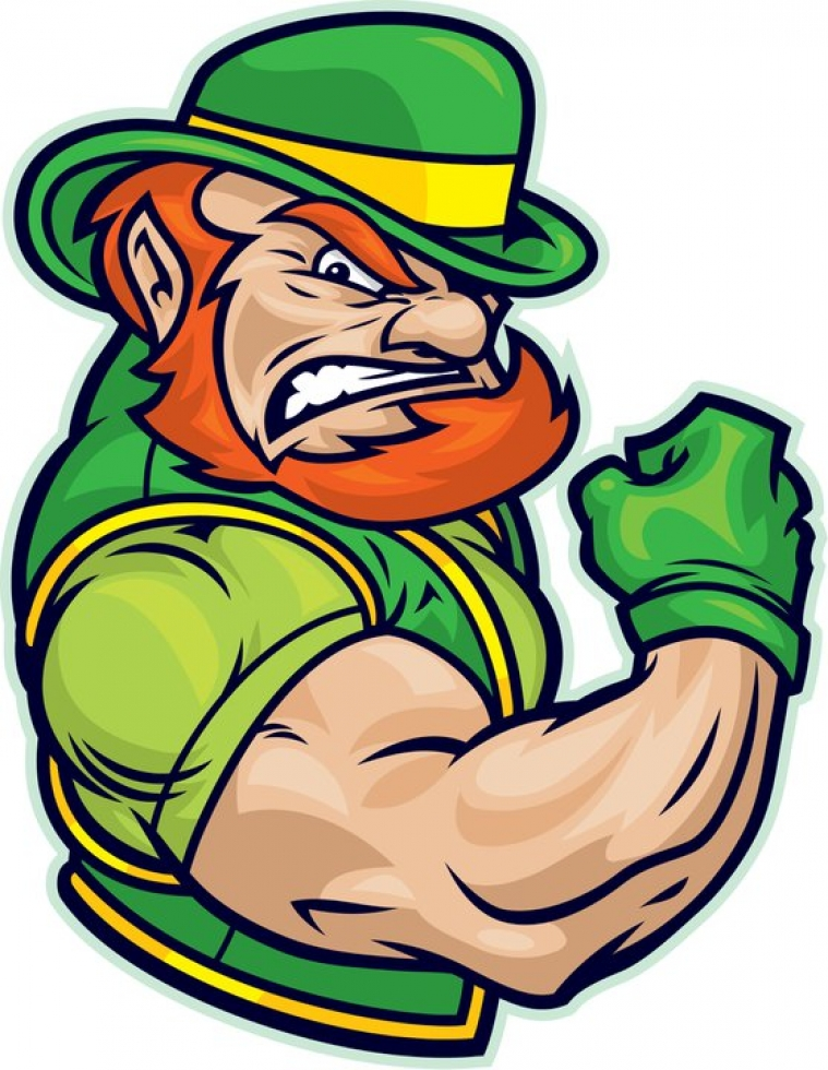 A leprechaun is a fictional character which you would come across in Irish folk lore. It is not - as believed by most Americans - something you are ever going to come across in The Republic of Ireland.