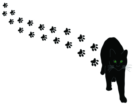 Cat Paw Print Graphic - Cliparts.co