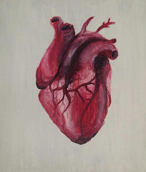Realistic Human Heart Color Tattoo Design