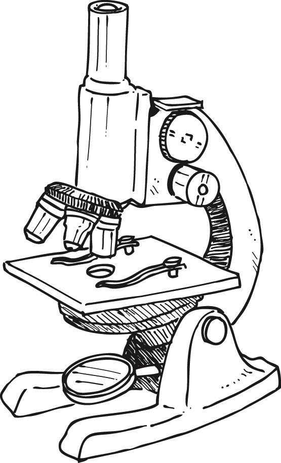 S Of Microscopes. S Of Microscopes. Worksheet. Microscope Worksheet At Mspartners.co