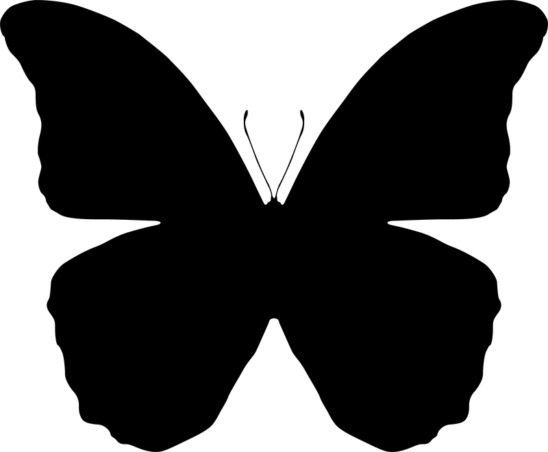 Butterfly Silhouettes - Free Vector Download | Qvectors.