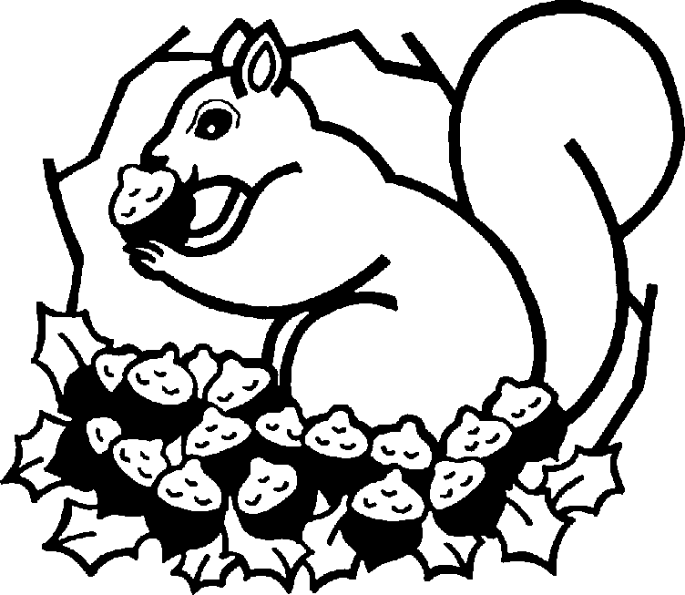 Squirrel images clipart black and white - photo#2