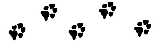 Dog Paw Print Clip Art - paw print graphics to use for your projects