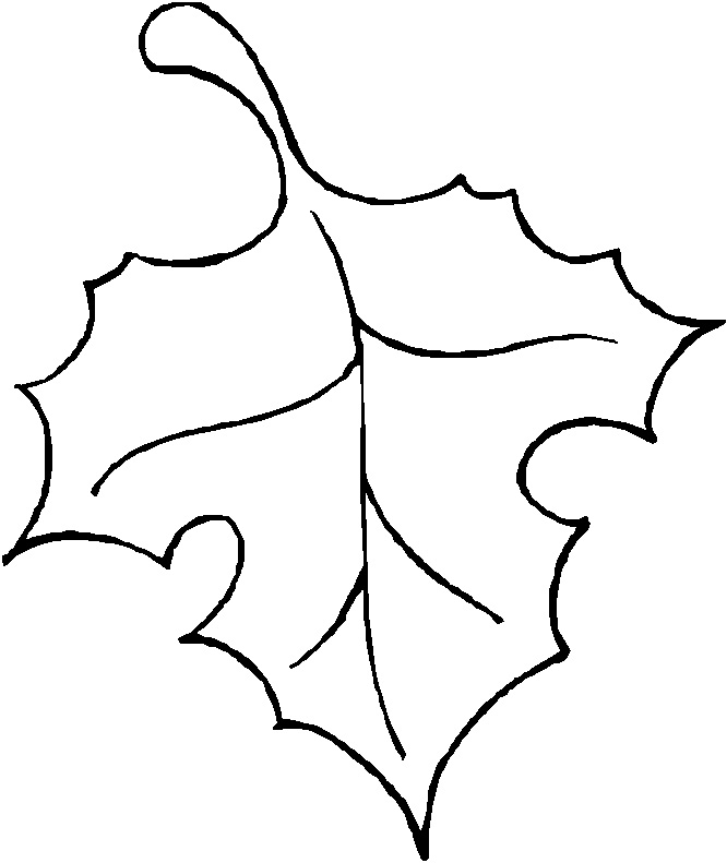 leaf black and white outline - photo #37
