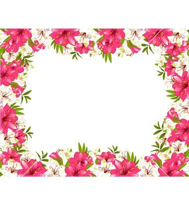 floral design wallpaper borders - photo #33