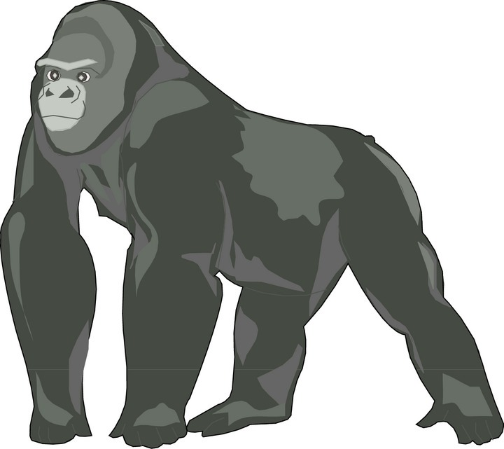 Gorilla Clip Art | Clipart Panda - Free Clipart Images