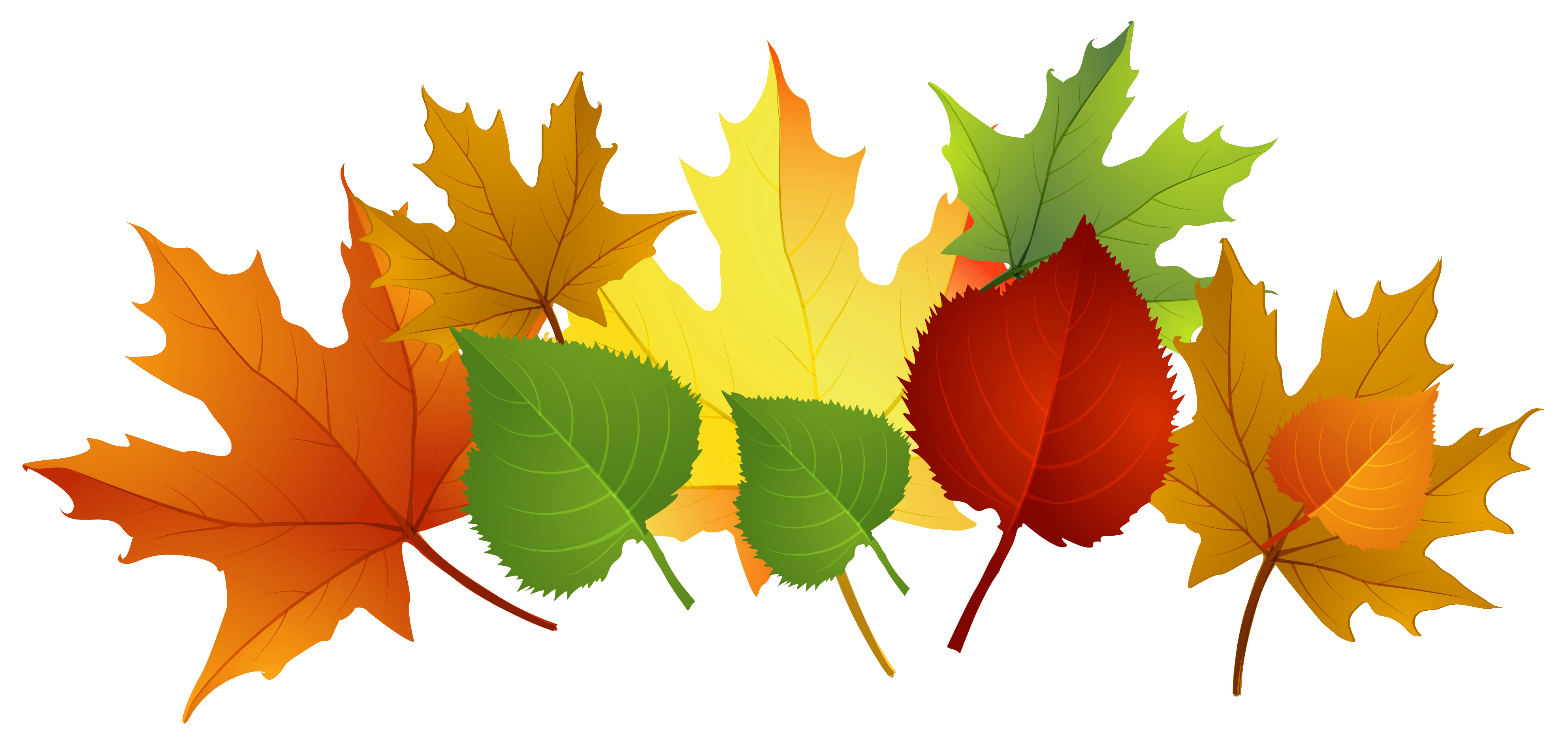 free autumn clipart images - photo #7