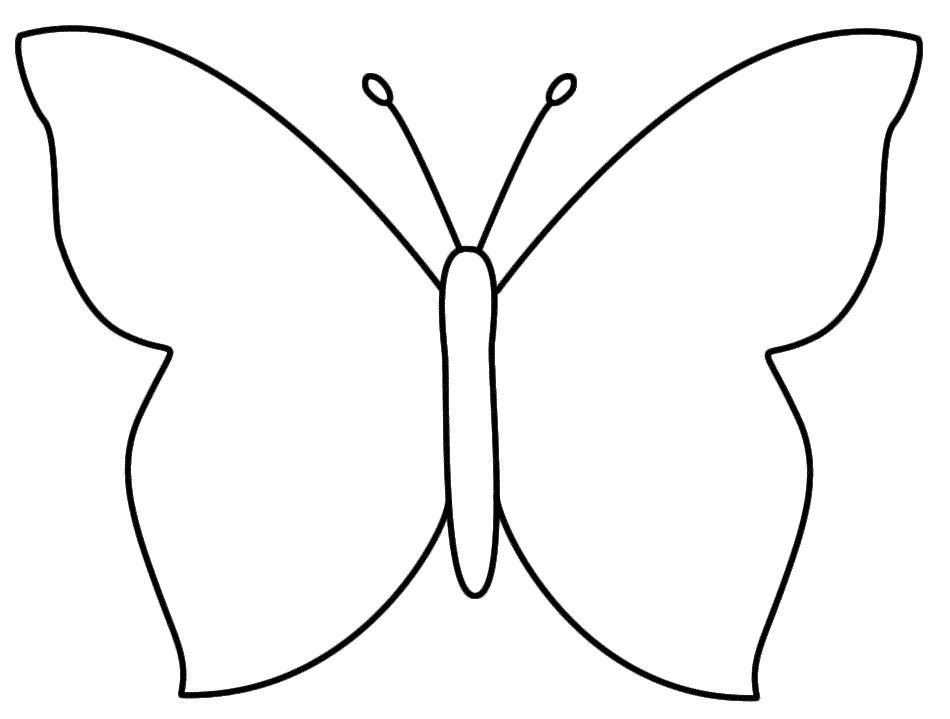 Basic Butterfly Template Cake Ideas And Designs - Cliparts.co