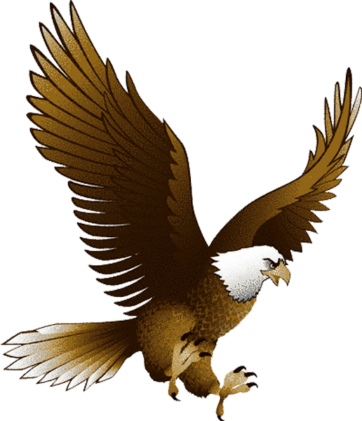 eagle bird clip art - photo #5