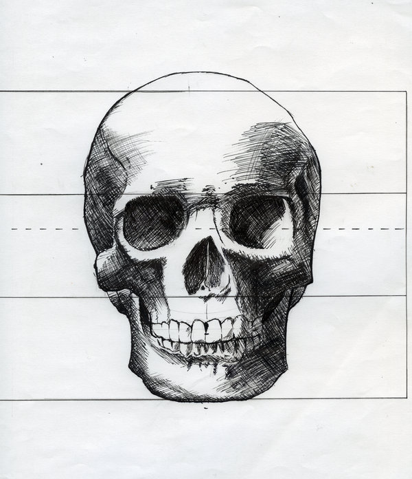 Skull Drawings Clipartsco