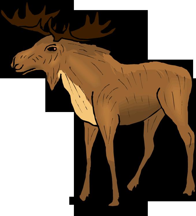 cow elk clipart - photo #42