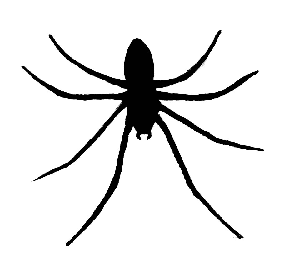 clipart spider - photo #46