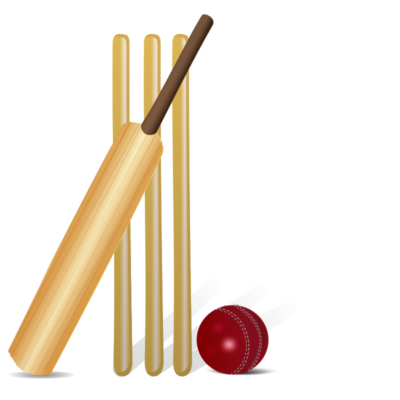 Cricket ball and bat logo