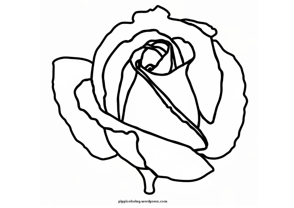 Blank Coloring Pages Flowers