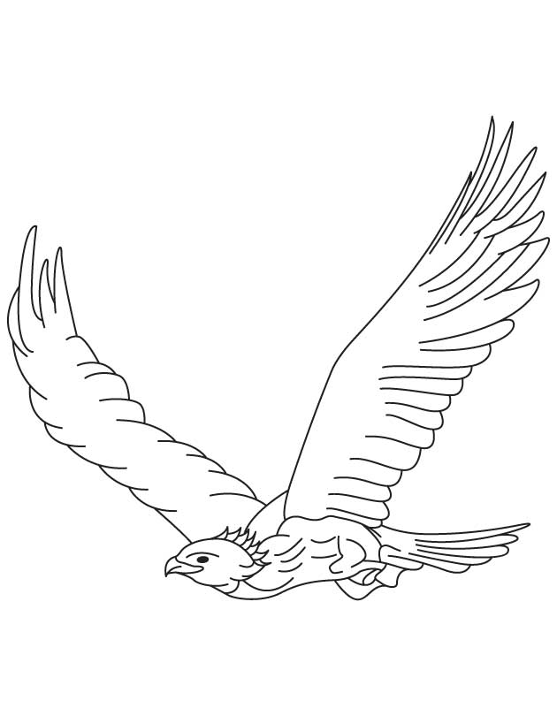 eagle and snake coloring pages - photo #11