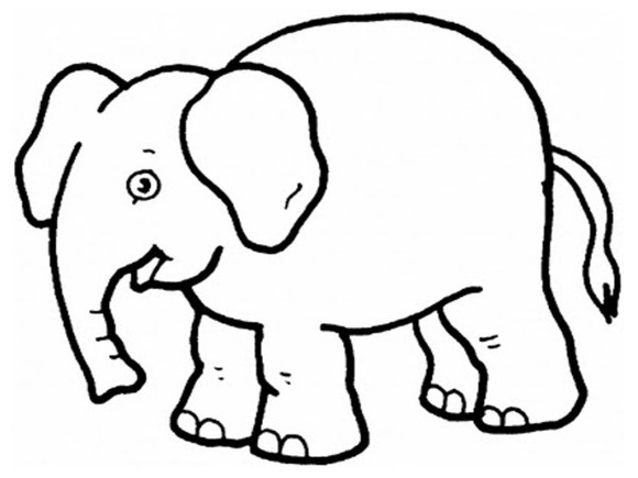 kids preschool coloring pages elephant animal coloring pages of