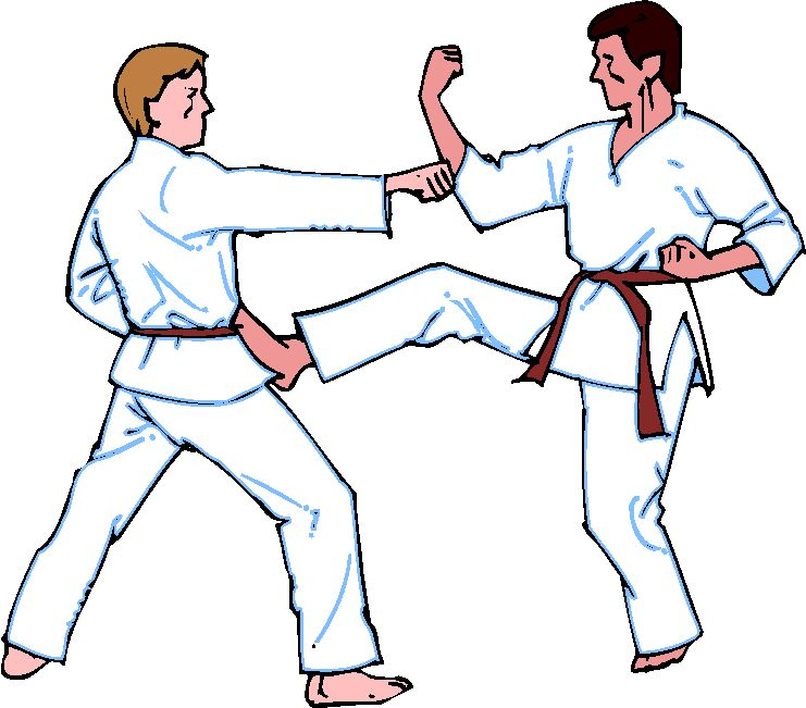 Karate Pictures Clip Art - Cliparts co