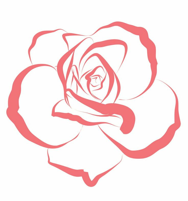 Rose Line Drawing Easy : Rose line art cliparts