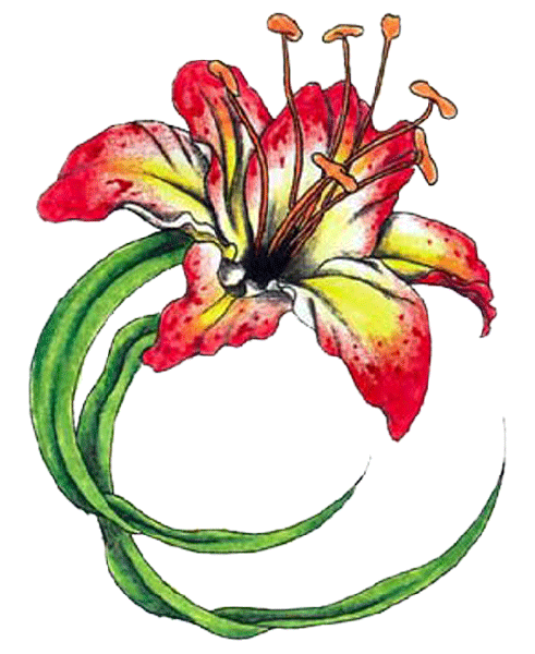 Flower Tattoos Pictures  Clipartsco