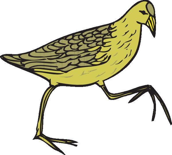 clipart of quail - photo #25
