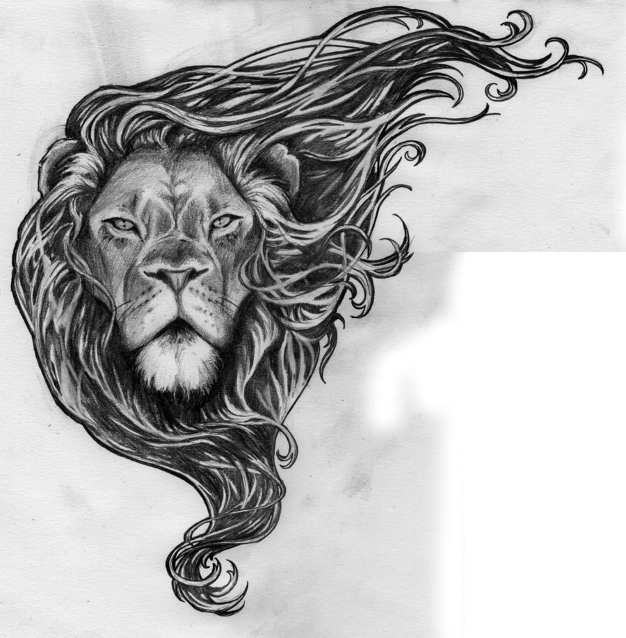 lion head drawing cliparts co