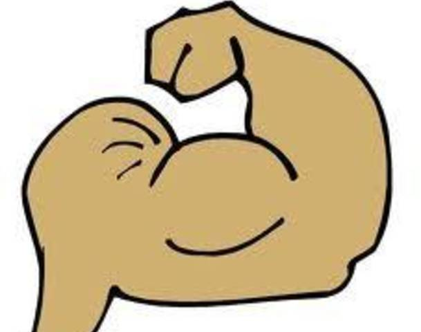 left arm muscle clipart rh worldartsme com clipart muscle man muscle clipart png